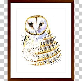 Owl Watercolor Painting Poster Photography PNG