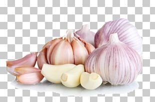 Garlic Food Eating Vegetable PNG