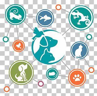 Brand Circle Human Behavior Point PNG