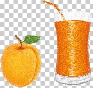 Orange Drink Orange Juice Fizzy Drinks Orange Soft Drink PNG