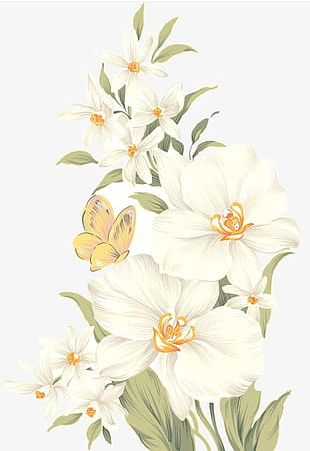 Hand-painted Flowers PNG