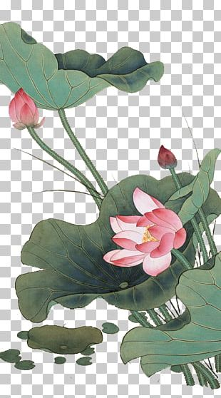 China Chinese Painting Gongbi Bird-and-flower Painting PNG