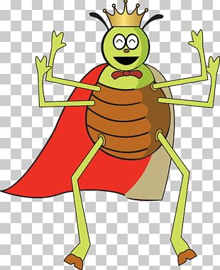 Insect Flea Software Bug PNG