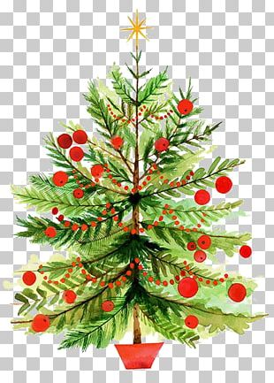 Christmas Tree Illustration PNG
