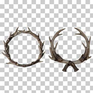 Moose Antler Elkhorn Fern PNG