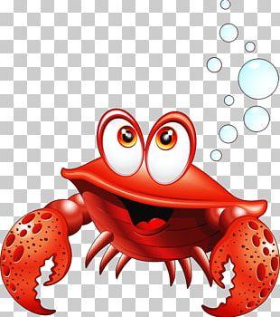 Crab Aquatic Animal Cartoon PNG