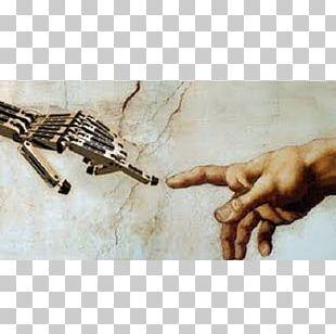 Humanoid Robot Homo Sapiens Robotic Arm Robotics PNG