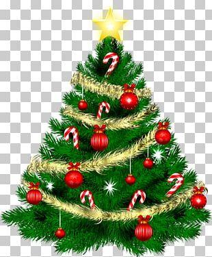 Christmas Day Christmas Ornament Christmas Tree Merry Christmas Candle PNG