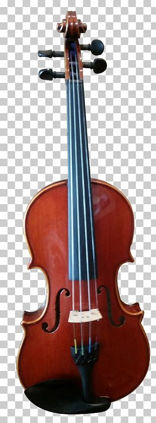 Violin Musical Instruments Viola String Instruments Cello PNG