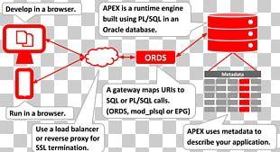 Oracle Sql Developer PNG Images, Oracle Sql Developer Clipart Free