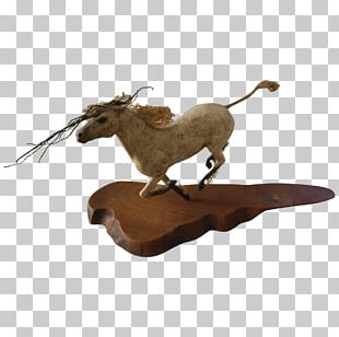 Fauna PNG