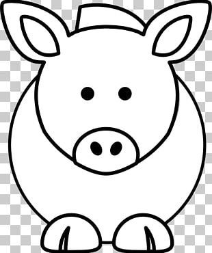 Domestic Pig Cattle Coloring Book Cartoon Drawing PNG