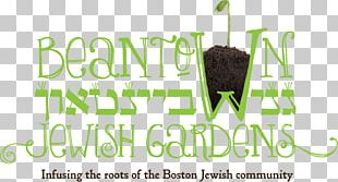 Ganei Beantown Judaism Sukkot Tu B'Shevat Agriculture PNG