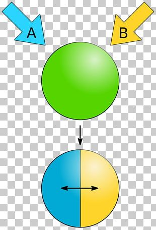 Janus Particles Nanoparticle Physical Property PNG