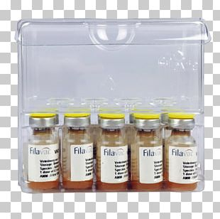 Rabbit Haemorrhagic Disease European Rabbit Vaccination Vaccine PNG