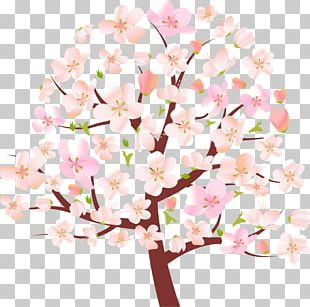 Tree Spring Cherry Blossom PNG