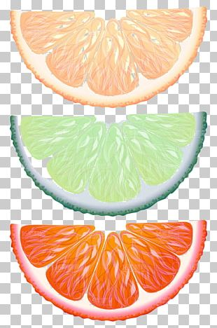 Lemon Key Lime Orange Fruit PNG