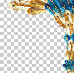 Peafowl United Kingdom Feather Paper Stationery PNG