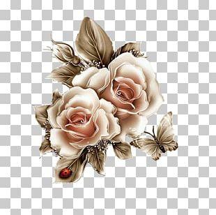 Cut Flowers Garden Roses Flower Bouquet PNG