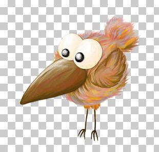 Chicken Bird Cartoon PNG