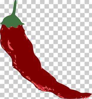 Tabasco Pepper Chili Pepper Chili Con Carne PNG