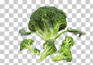 Broccoli Cauliflower Vegetable Food Nutrition PNG