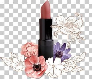 Lip Balm Lipstick Cosmetics Color PNG