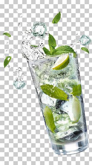 Mojito Cocktail Garnish Gin And Tonic Vodka Tonic PNG