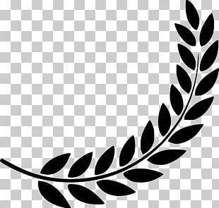 Laurel Wreath Computer Icons Symbol PNG
