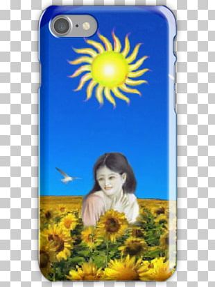 Common Sunflower Sunflower M Mobile Phone Accessories Mobile Phones Sunflowers PNG