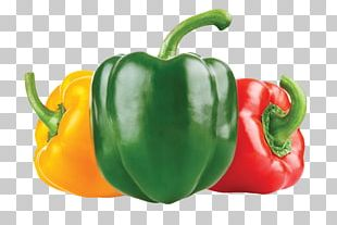 Chili Con Carne Mexican Cuisine Bell Pepper Chili Pepper PNG