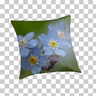 Zazzle Throw Pillows Post Cards Cushion PNG