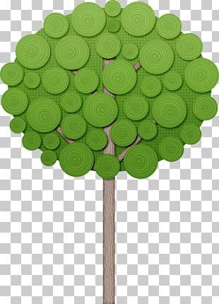 Tree Shrub Drawing PNG