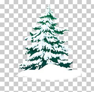 Christmas Card Christmas Decoration Christmas Tree PNG