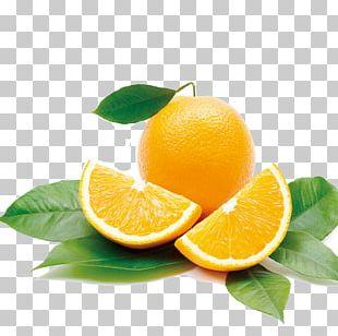 Orange Juice Mandarin Orange Health Fruit PNG
