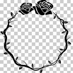 Rose Flower Thorns PNG