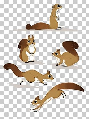 Squirrel Canidae Rodent PNG