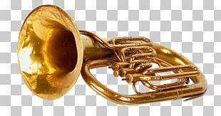 Trumpet Musical Instrument Trombone Wind Instrument Tuba PNG