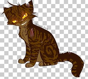 Kitten Whiskers Tigerstar Warriors Cat PNG