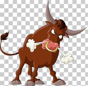 Bull Cattle Cartoon Illustration PNG