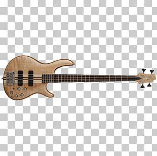 Bass Guitar Cort Guitars String Instruments Musical Instruments PNG