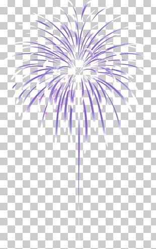 Fireworks Cartoon Firecracker PNG