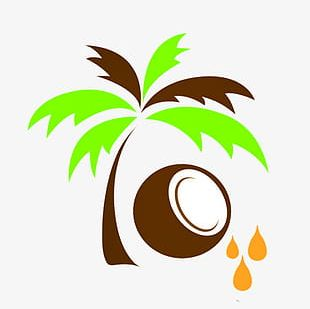 Free To Pull The Material Coconut Oil PNG