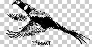 Green Pheasant Galliformes Feather Bird PNG