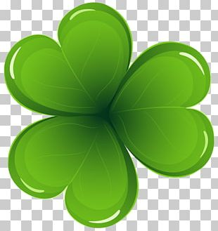 Ireland Saint Patrick's Day Shamrock PNG