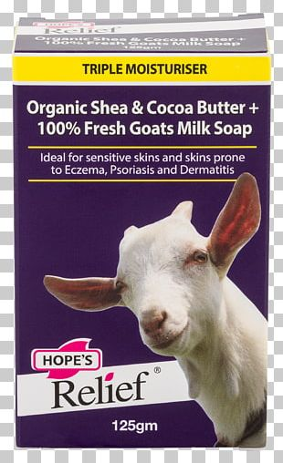 Goat Milk Goat Milk Cream Goat Cheese PNG