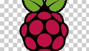 Raspberry Pi Foundation Computer Installation Raspbian PNG