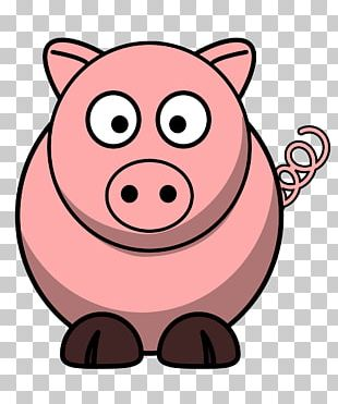 Large White Pig Free Content PNG