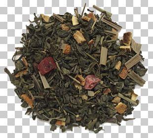Sencha Hōjicha Nilgiri Tea Green Tea PNG