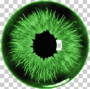 Eye Lens Photography Iris PNG